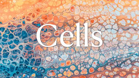 Cells - The Fundamental Units of Life