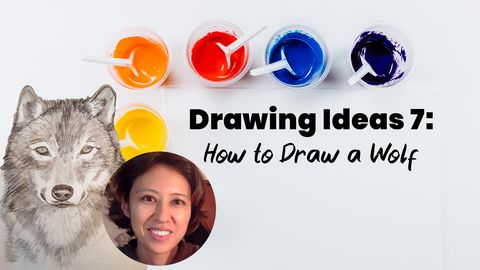 Drawing Ideas 7: How to Draw a Wolf