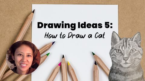 Drawing Ideas 5: How to Draw a Cat