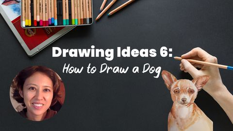 Drawing Ideas 6: How to Draw a Dog