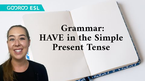Grammar: TO HAVE in the Simple Present Tense