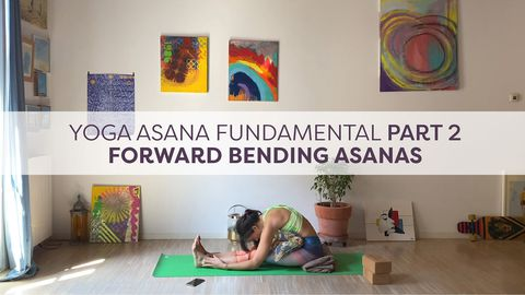 Yoga Asana Fundamental, Part 2 - Forward Bending Asanas
