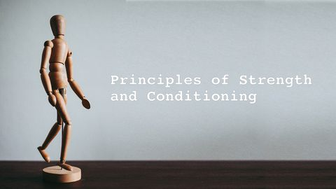 Principles of Strength and Conditioning