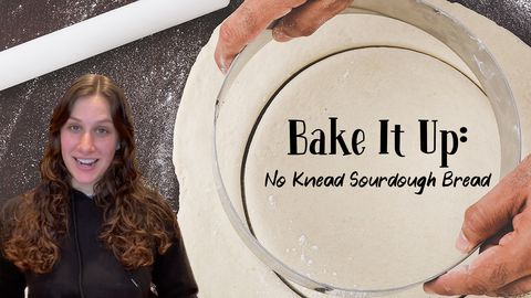 Bake It Up: No Knead Sourdough Bread