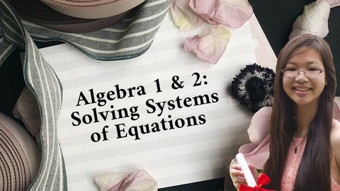 Algebra 1 & 2: Solving a System of Linear Equations